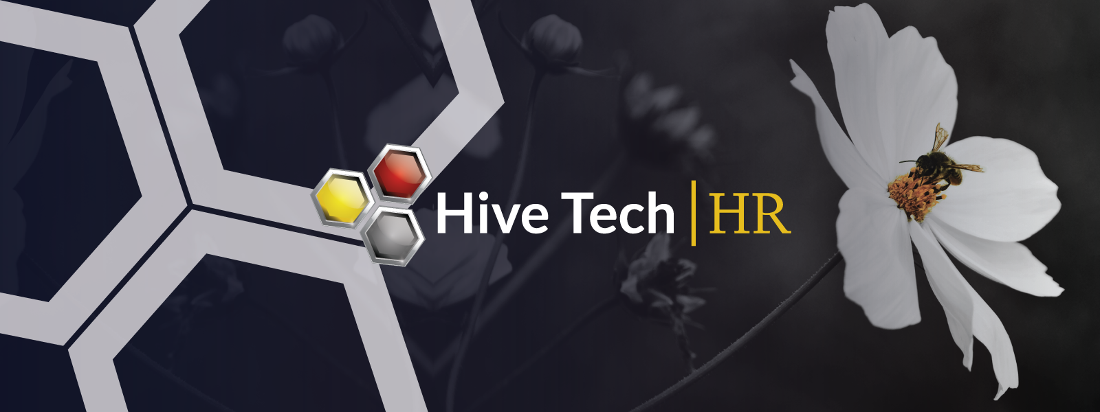 hive tech final logo